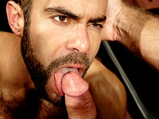 Gay DVD porn video tube. This category gives you diferent gay dvd to buy and look. See this sexy gay dvd categories.